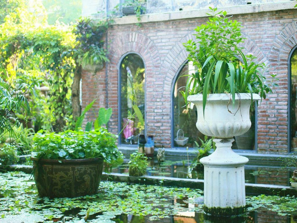韦特伊莫奈花园