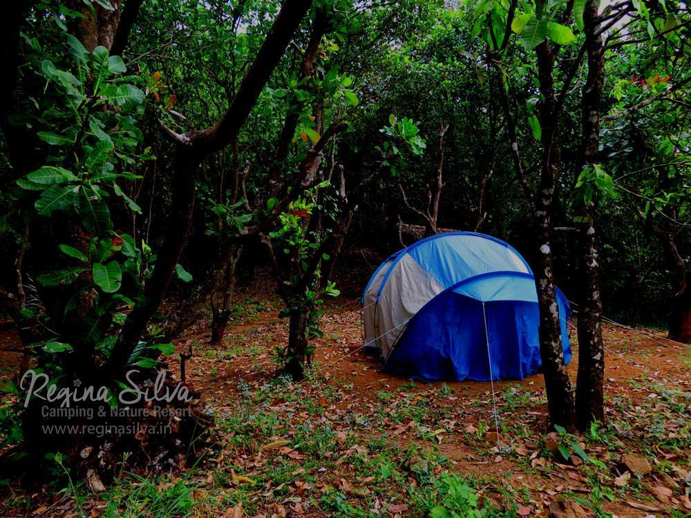 里贾纳席尔瓦营舍及自然度假村 (reginasilva camping & nature