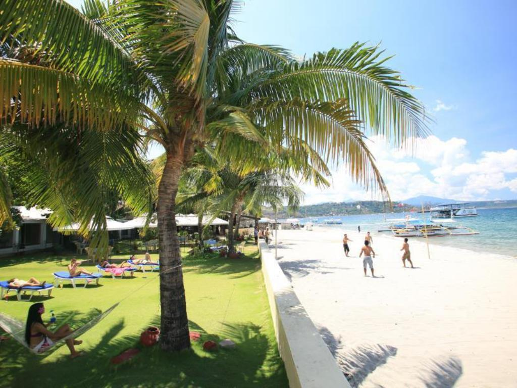 Best Price On Wild Orchid Beach Resort In Subic Zambales