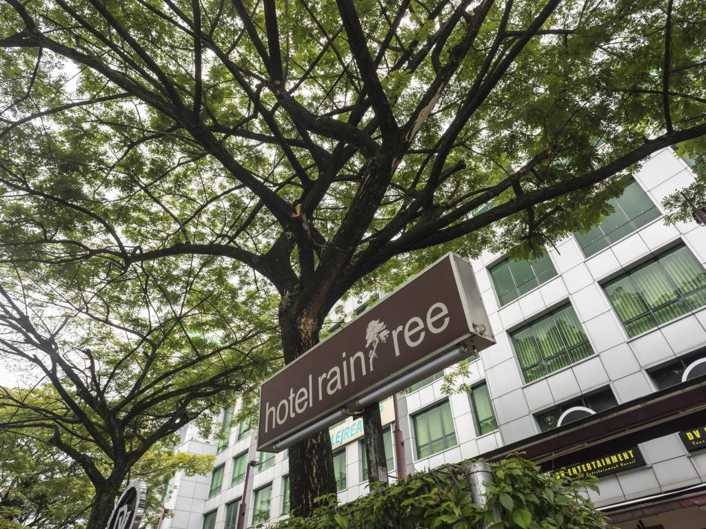 More About Raintree Hotel