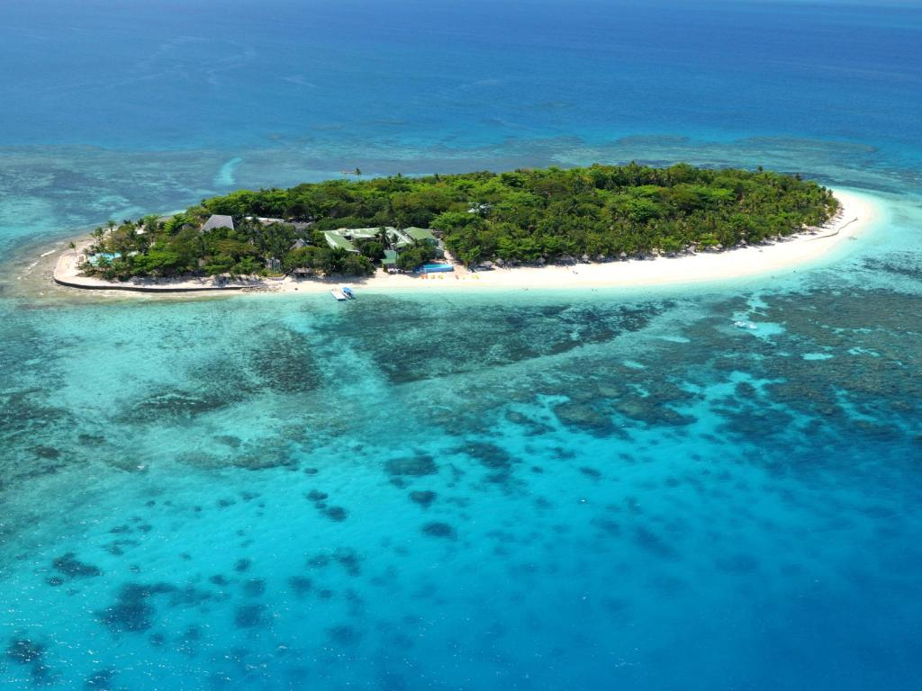 Snorkeling From Beach Treasure Island Fiji