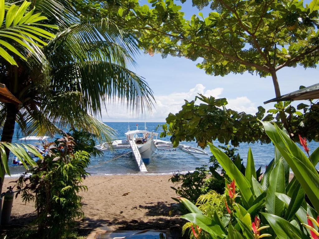 Atlantis dive resort dumaguete in philippines room deals - Sanom beach dive resort ...
