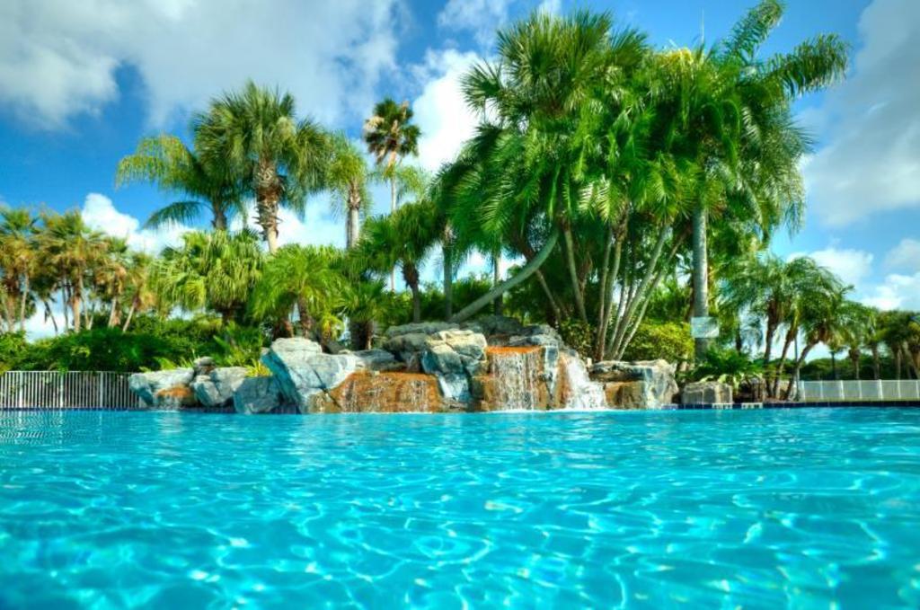 best price on international palms resort conference. Black Bedroom Furniture Sets. Home Design Ideas