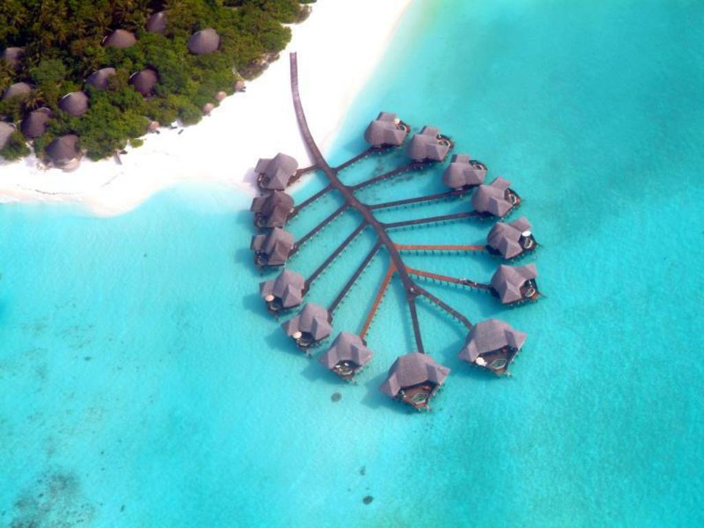 Best price on coco palm dhuni kolhu in maldives islands reviews more about coco palm dhuni kolhu sciox Gallery