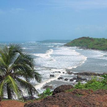 Goa, 7811 hotels