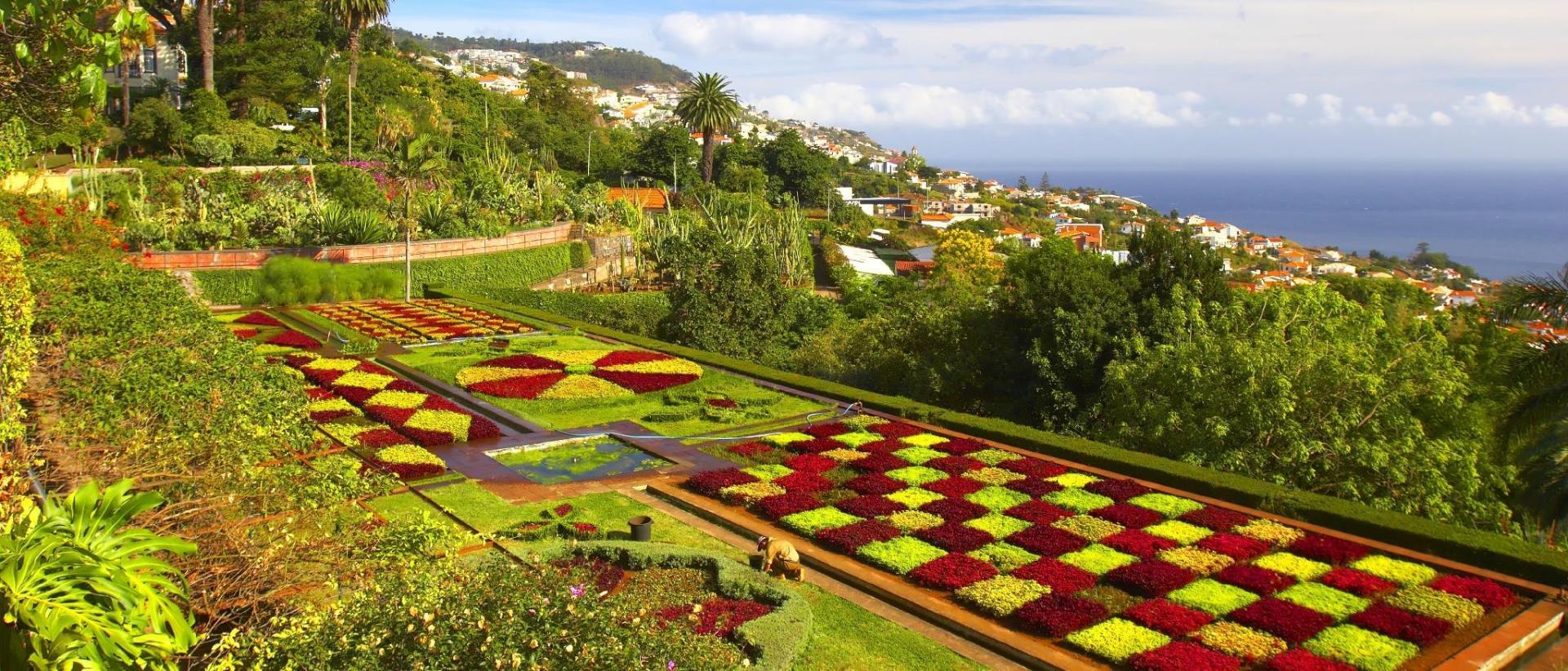 Funchal Keskusta Funchal Hotellit Ja Kartat Alueella Funchal