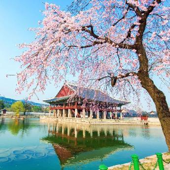 Seoul Hotels, 4,359 hotels
