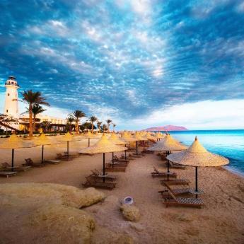 فنادق شرم الشيخ, 499  فندقًا