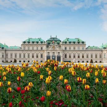 فنادق فيينا, 3,261  فندقًا