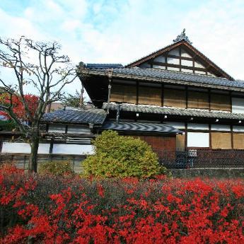 Takayama Hotels, 317 hotels