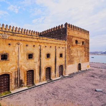 Medina, 341 hotels