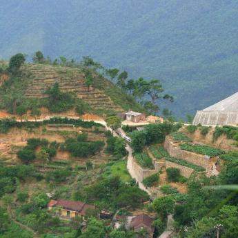 Tam Đảo (Vĩnh Phúc) khách sạn, 65 khách sạn
