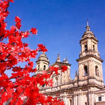 Bogotá, 2278 hotéis