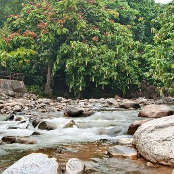 Hotel Bentong, 186 hotels
