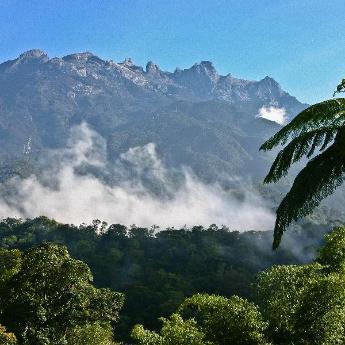 Hotel Kinabalu National Park, 185 hotels