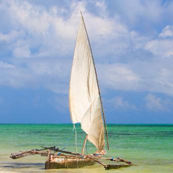 Zanzibar, 876 hotels