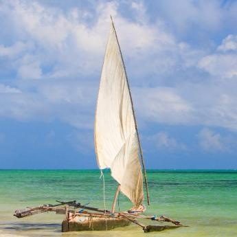 Zanzibar, 1207 hoteli