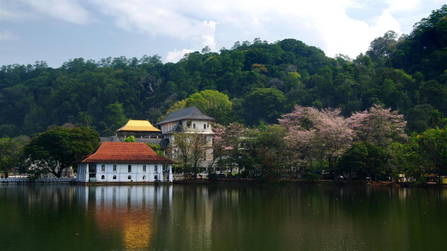 10 Best Kandy Hotels: HD Photos + Reviews of Hotels in Kandy