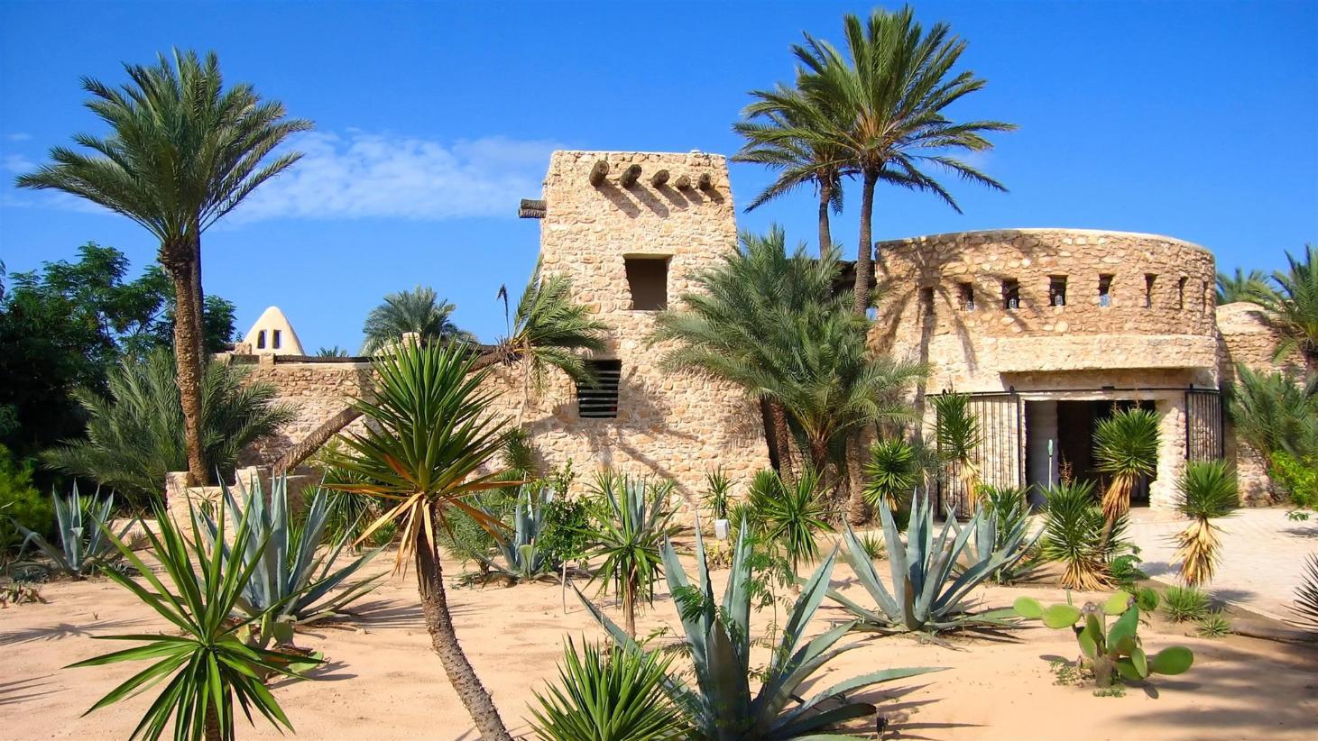 Dating Site Tunisia Djerba