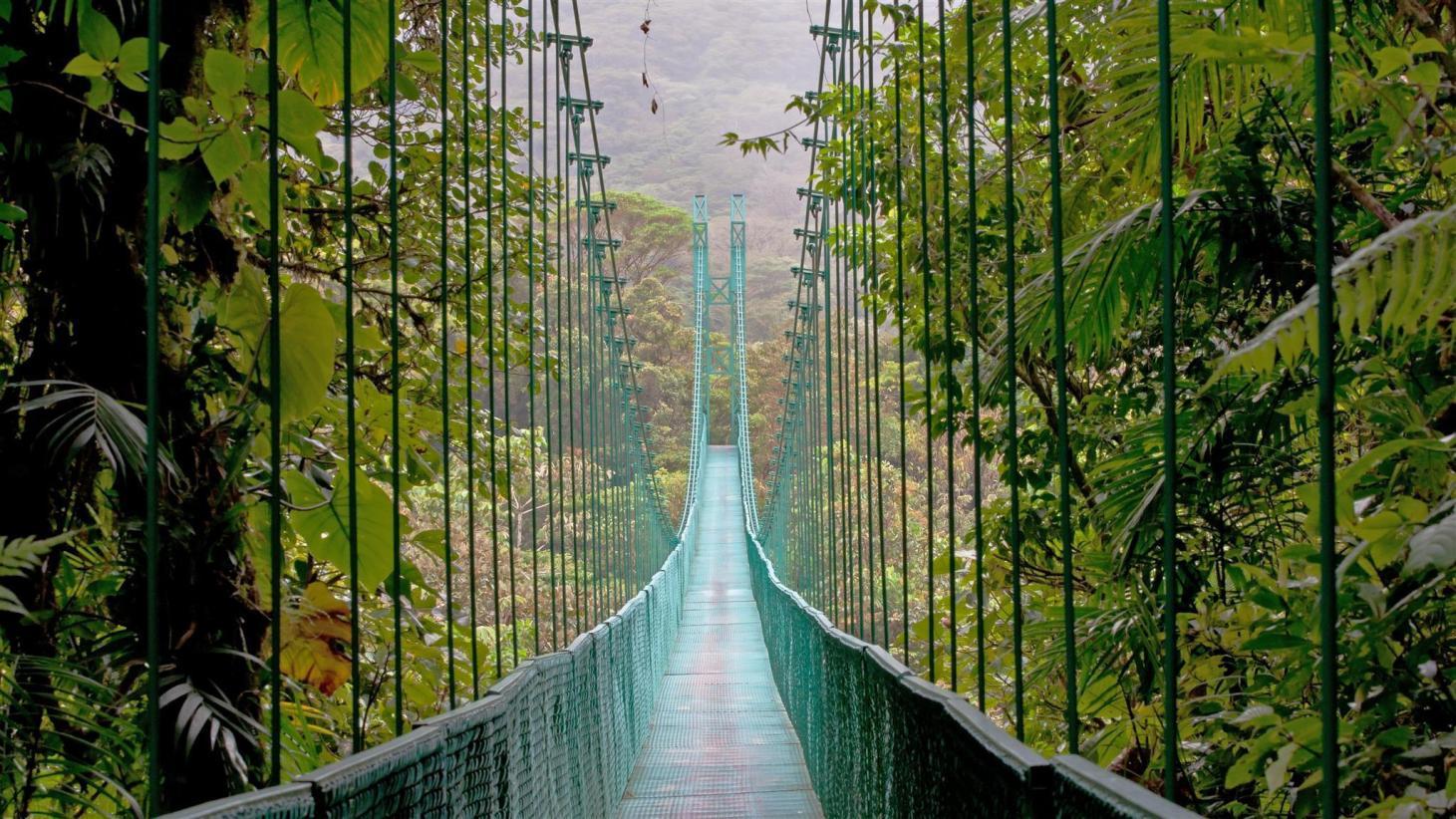 10 Best Monteverde Hotels: HD Photos + Reviews of Hotels in ...