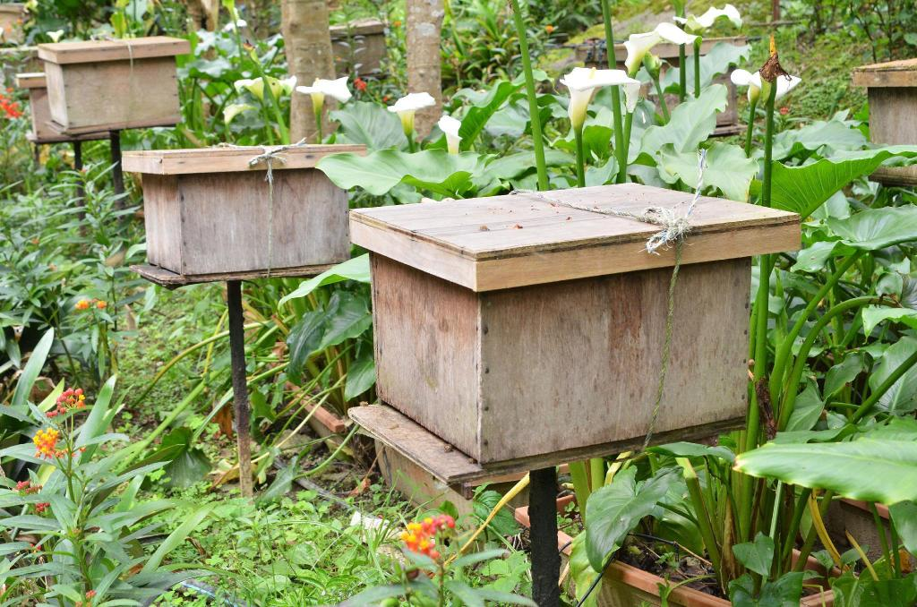 Ee Feng Gu Honeybee Farm - 2.74 km from property