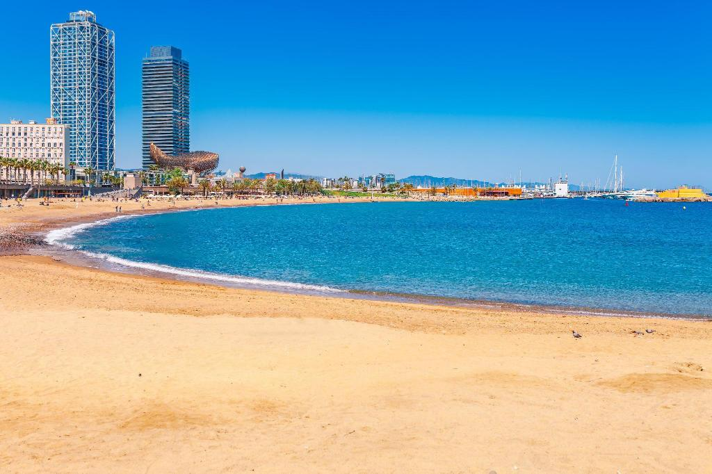 Barceloneta Beach - 2.44 km from property Urban District - MA31 Apartments