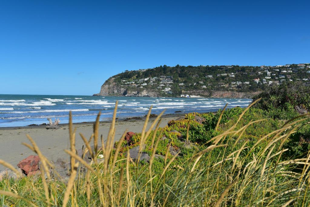 Sumner Beach - 1.23 km from property Purple-der House Accommodation