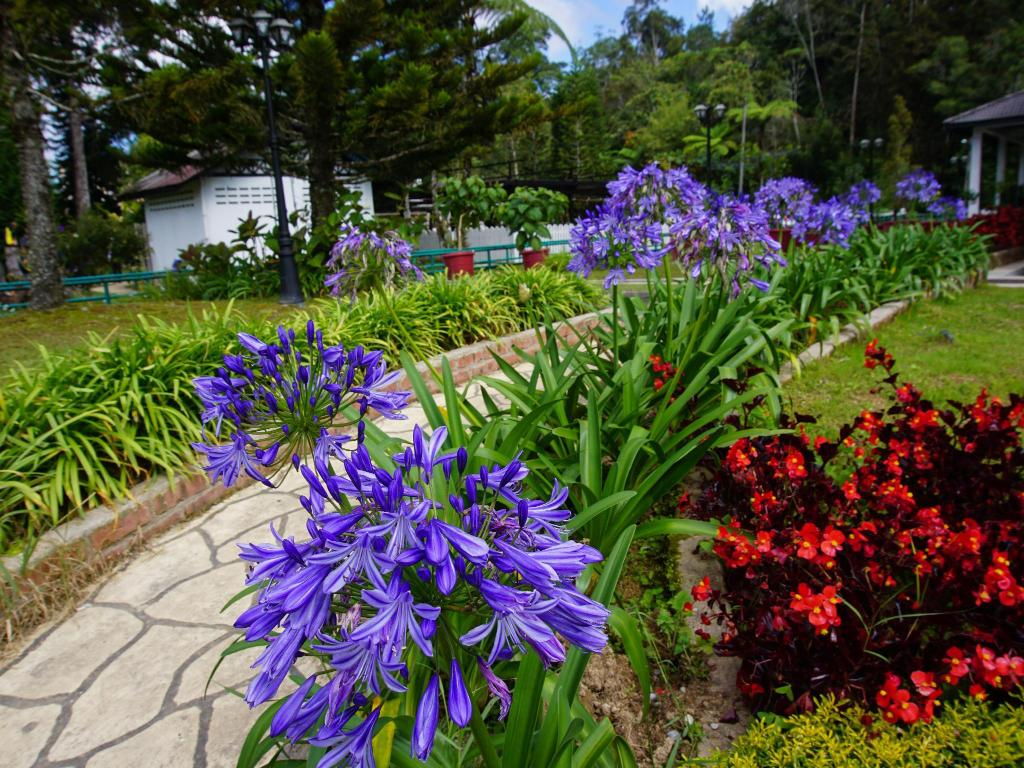 Taman Agroteknologi Mardi Cameron - 1.76 km from property Astana Holiday Apartment,  Cameron Highlands