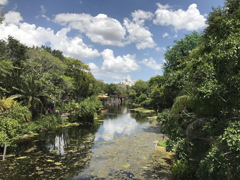 Disney's Animal Kingdom - 3.57 km from property Oakwater Three-Bedroom Apartment OAK