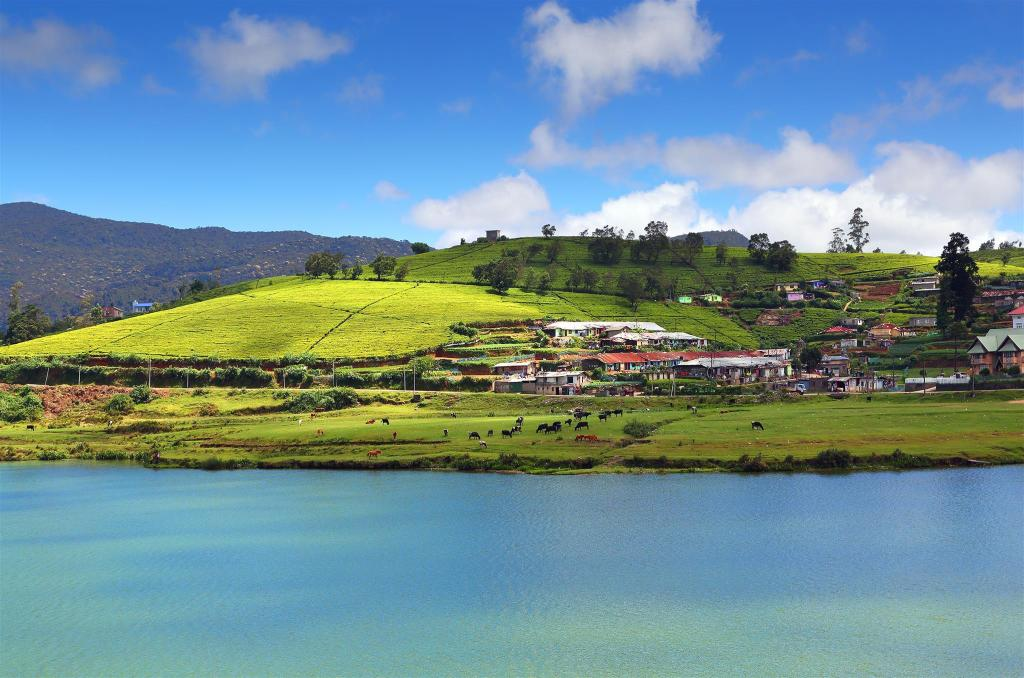 Gregory Lake - 1.97 km van de accommodatie Sarah Cottage - Nuwara Eliya