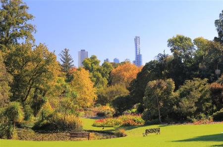 Royal Botanic Gardens - 3.08 km from property Brother's House