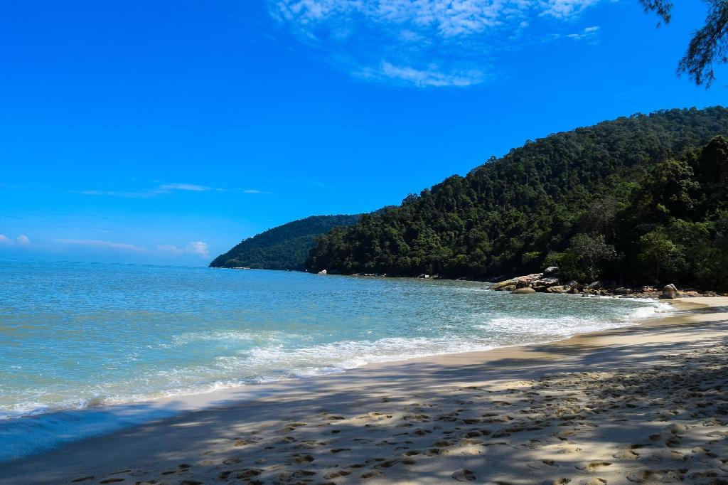 Penang National Park - 3.29 km from property ET Budget Guest House By The Beach