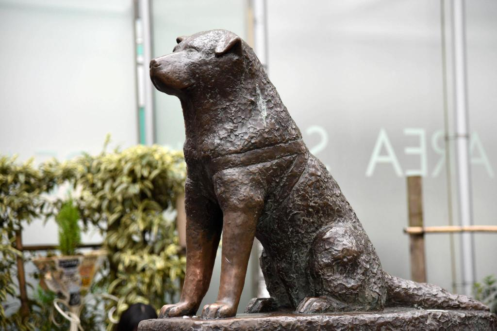 Hachi Statue - 6.75 km from property