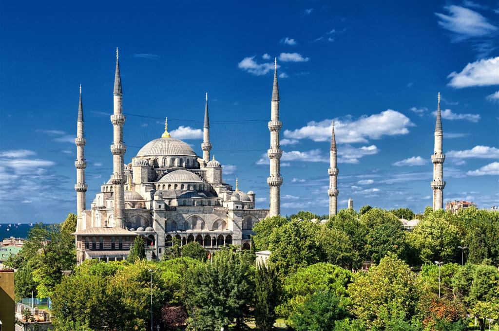Blue Mosque - 1.11 km from property istanbul orient hotel