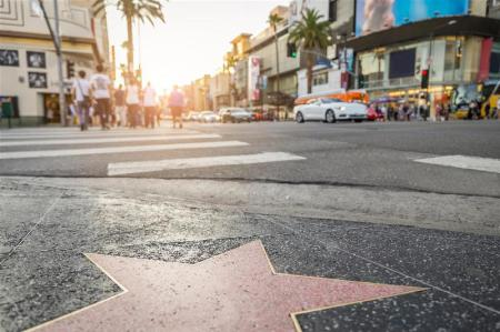 Hollywood Walk Of Fame - 8.84 km from property SpringHill Suites Los Angeles Burbank/Downtown