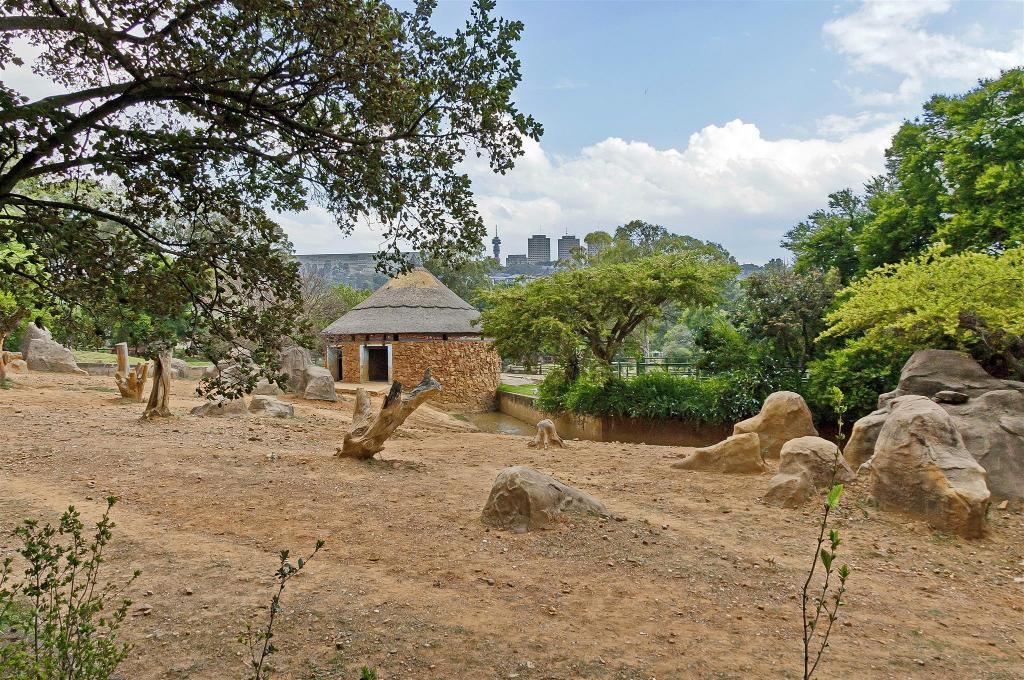 Johannesburg Zoo - 8.27 km from property Northcliff Bed and Breakfast