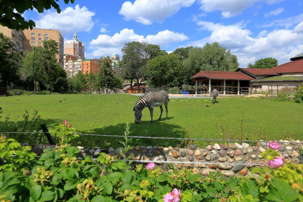 Moscow Zoo - 2.82 km from property Apartment On Khoroshevskom Highway