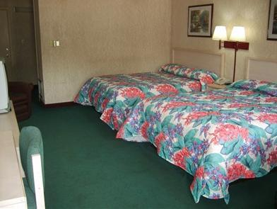 Deluxe Room with Three Double Beds