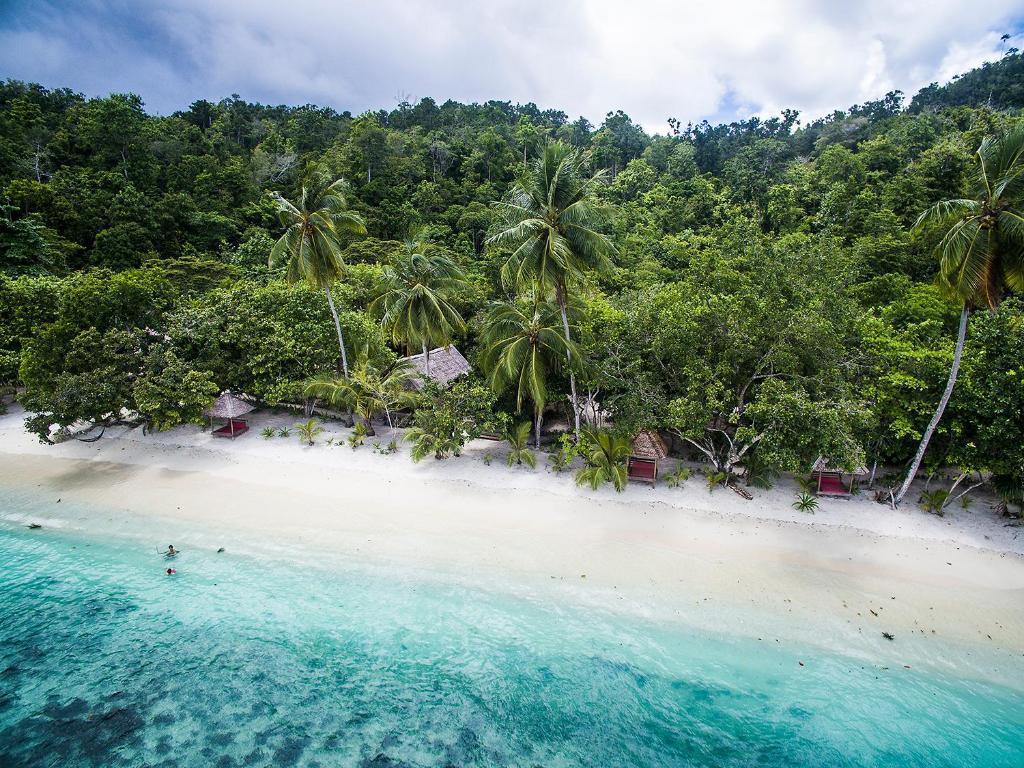 Raja Ampat Biodiversity Nature Resort di Raja Ampat - Ulasan Tepercaya & Harga Terbaru 2021 di Agoda