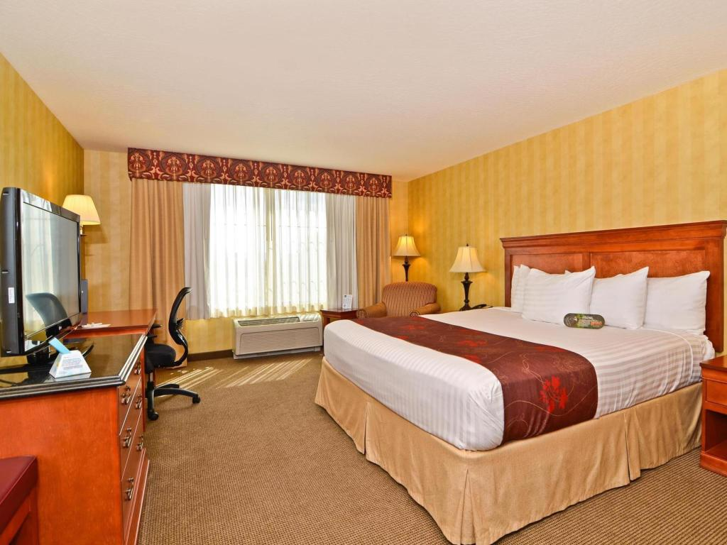 Quarto King A - Cama Best Western Plus Pasco Inn and Suites