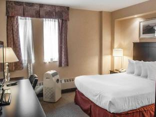 Econo Lodge Inn and Suites Downtown Toronto