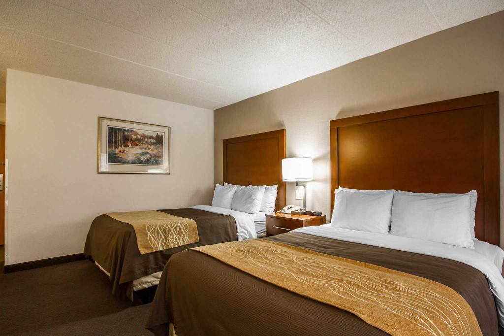 2 двойни легла Comfort Inn and Suites Madison - Airport