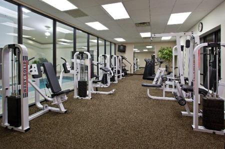 fitness centrum Holiday Inn Express Hotel & Suites Wadsworth