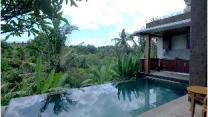 300sqm 2 bedroom, 2 private bathroom Vilă in Ubud
