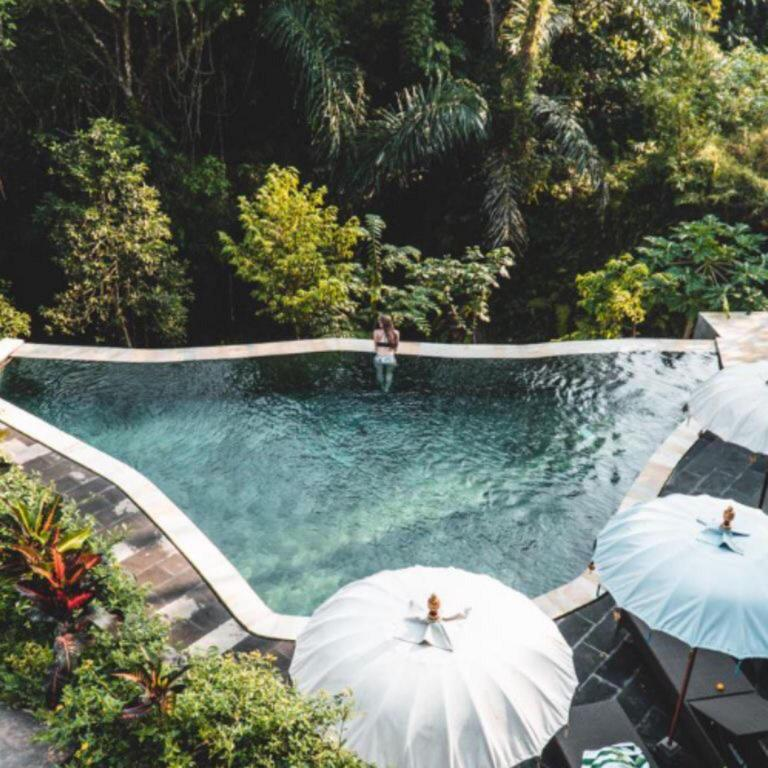 The Jungle Villa Bali Offers Free Cancellation 2021 Price Lists Reviews