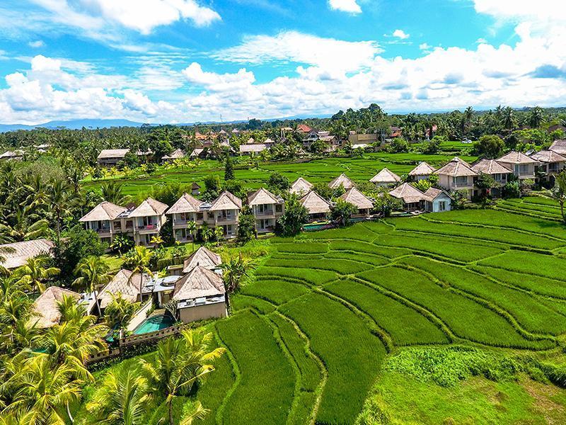 Atta Mesari Resort & Spa Μπαλί Ινδονησία ΟΙ ΚΑΛΥΤΕΡΕΣ