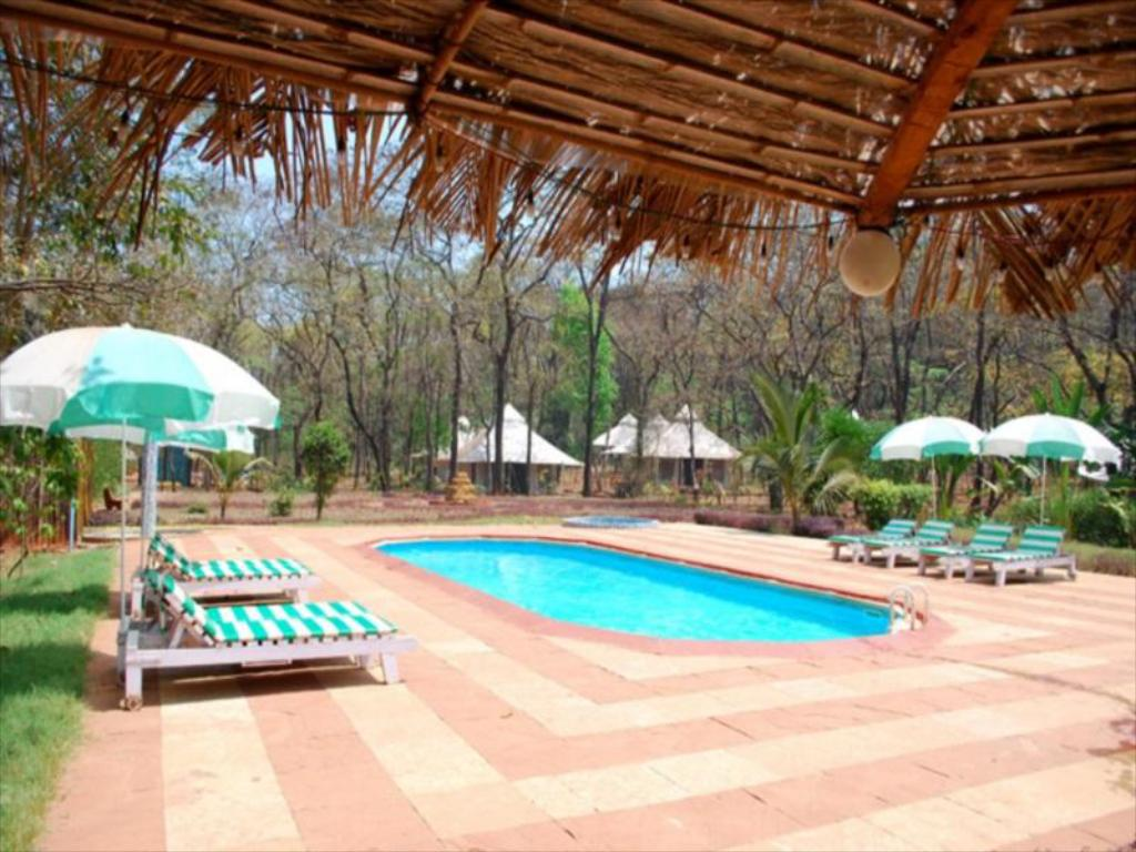 Swimming pool The Farmhouse India