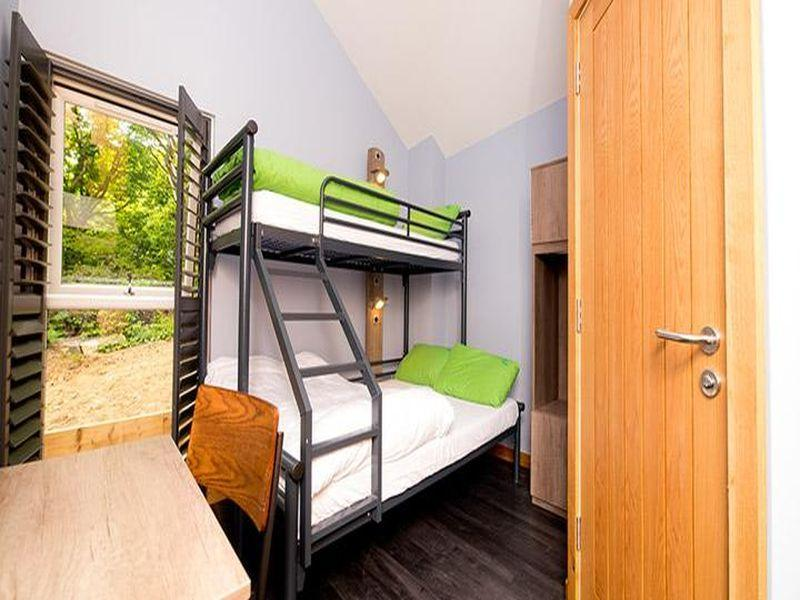 Bunk Bed in Male Dormitory Room with Shared Bathroom