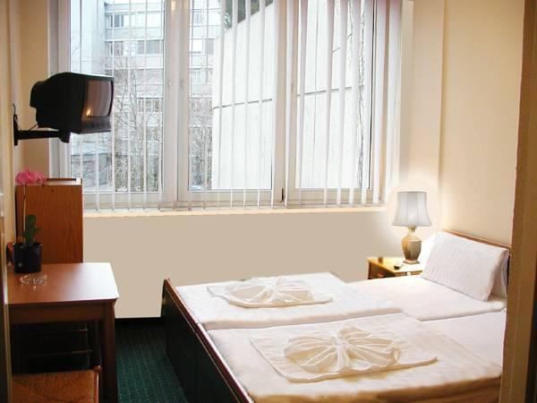 Dobbeltrom med egen dusj/WC (Double Room with Private Shower/WC)