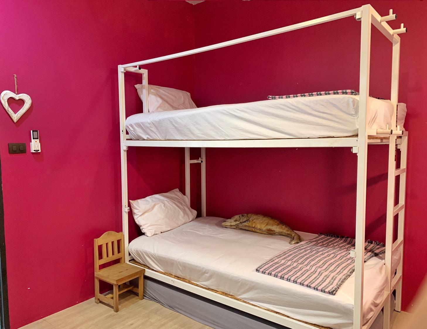 Camera Privata con Letto a Castello (Private Room with Bunk Bed)